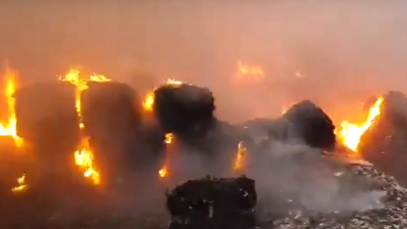 Pożar składowisko śmieci