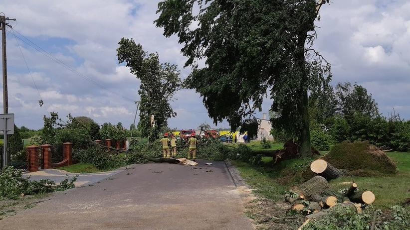 Premier jedzie na Lubelszczyznę. Do miejscowości zniszczonych przez trąbę powietrzną