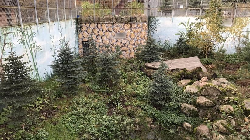 Prywatne zoo w Człuchowie