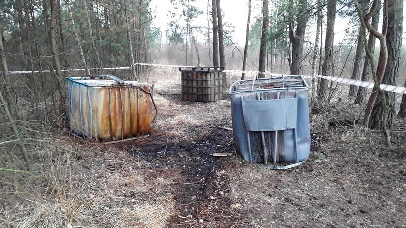 Substancje chemiczne w lesie