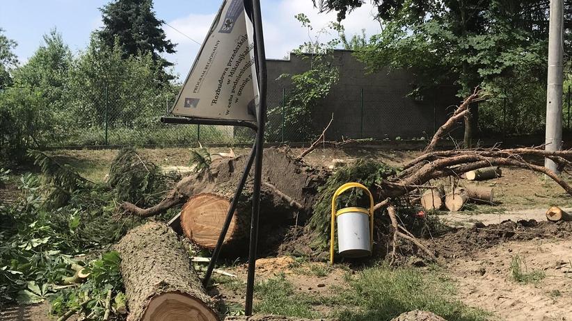 Burze i wichury nad Polską. Ogrom zniszczeń, setki interwencji strażaków