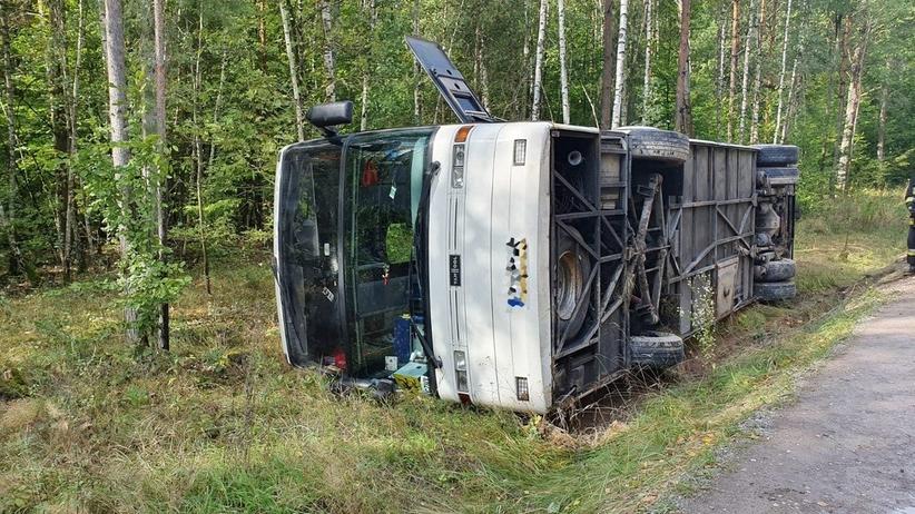Wypadek k. Radomia. Autobus z dziećmi wpadł do rowu. 12 osób w szpitalu