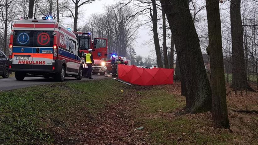 Śmiertelny wypadek. Dwóch nastolatków rozbiło się na drzewie