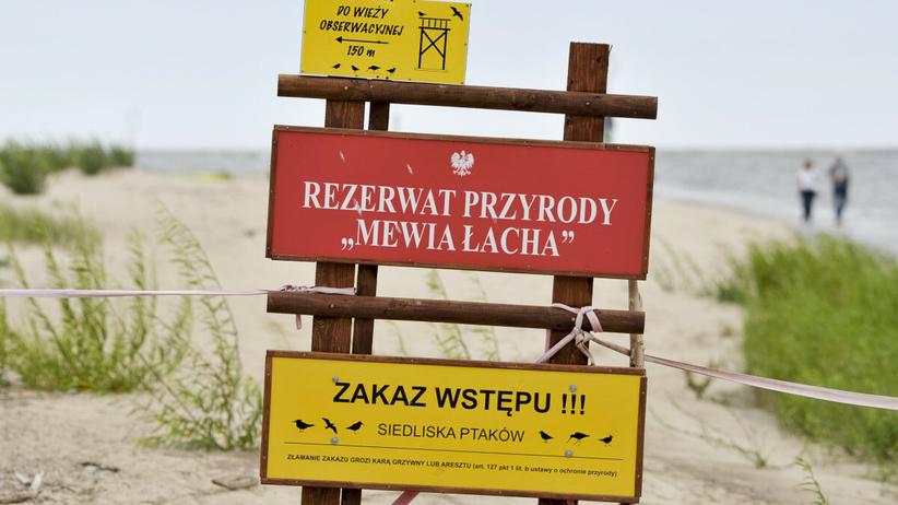 rezerwat przyrody Mewia Łacha