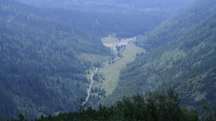Ludzkie szczątki znalezione w Dolinie Jaworzynki w Tatrach