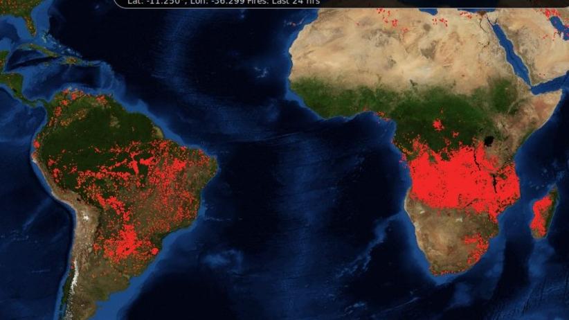 Płonie nie tylko Amazonia. Dramatyczna sytuacja w Afryce
