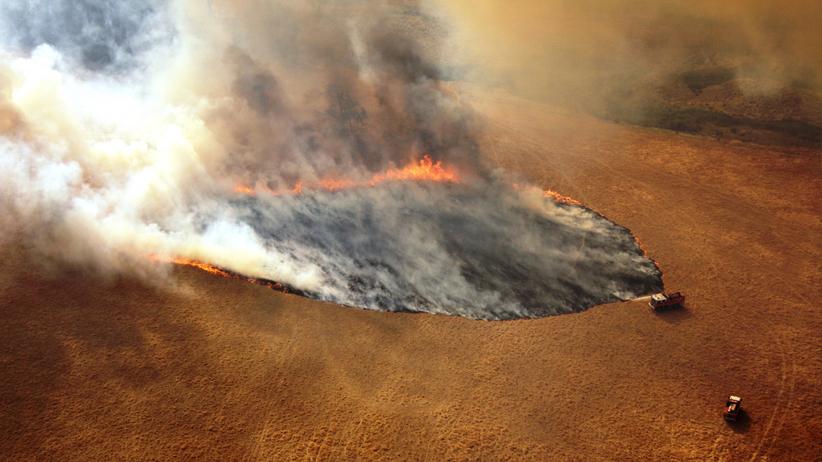 Australia płonie. Nastoletni wolontariusz oskarżony o 7 podpaleń