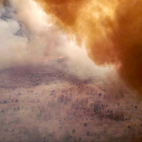 Czarnobyl: Ogień wyrzuca w powietrze radioaktywne pyły. Pożar dotarł do Czerwonego Lasu