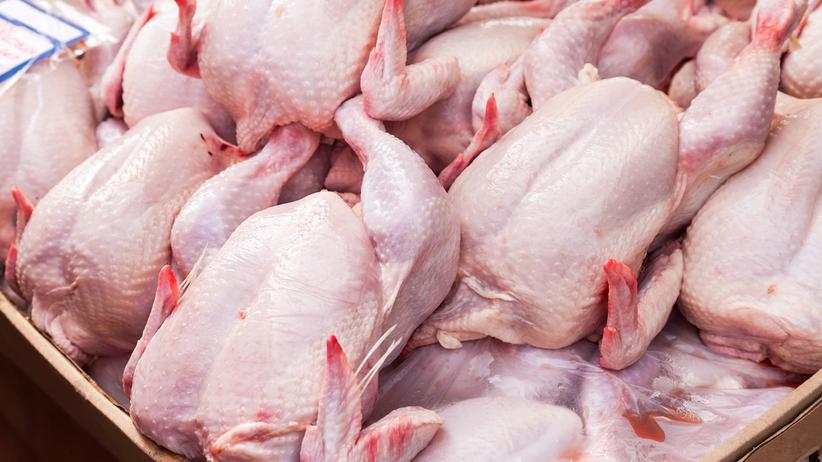 Salmonella w kurczakach z Polski. Mięso w większości trafiło do restauracji