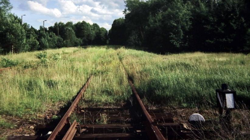 Holenderska kolej rozlicza się za Holokaust. Wypłaci odszkodowania