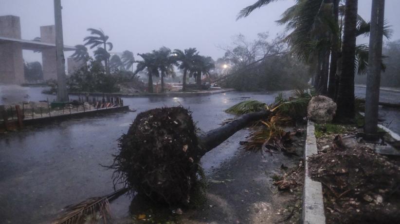 huragan Delta