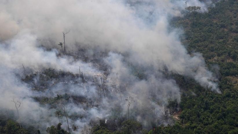 Amazonia w ogniu. Światowi przywódcy kłócą się, zamiast reagować