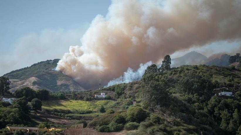 Pożar lasu na Gran Canarii. Ewakuowano ponad 2000 osób