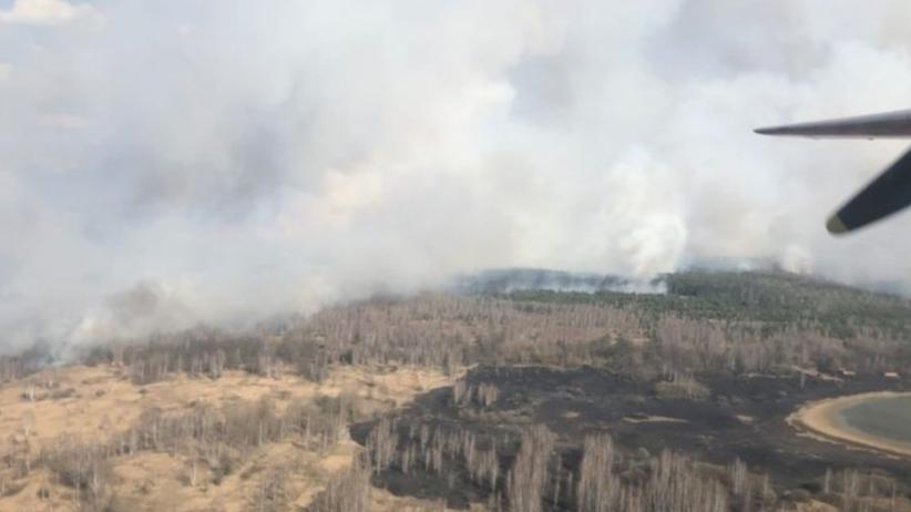 Pożar w Czarnobylu. Płonie 20 hektarów lasu w zamkniętej strefie  - Wiadomości