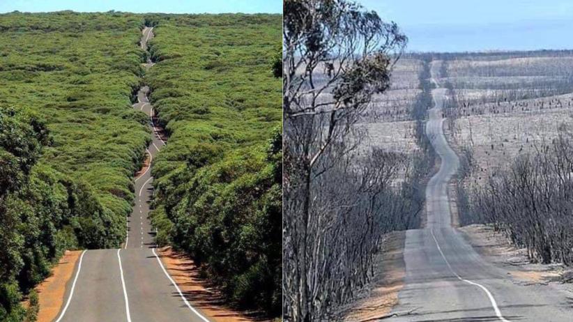 Pożary i powodzie w Australii. Wstrząsające zdjęcia przed i po