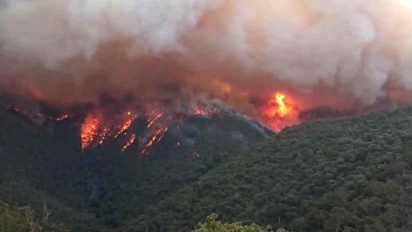 Pożary Australia