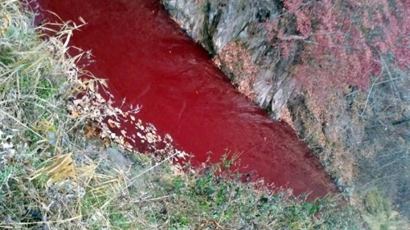 Rzeka spłynęła krwią