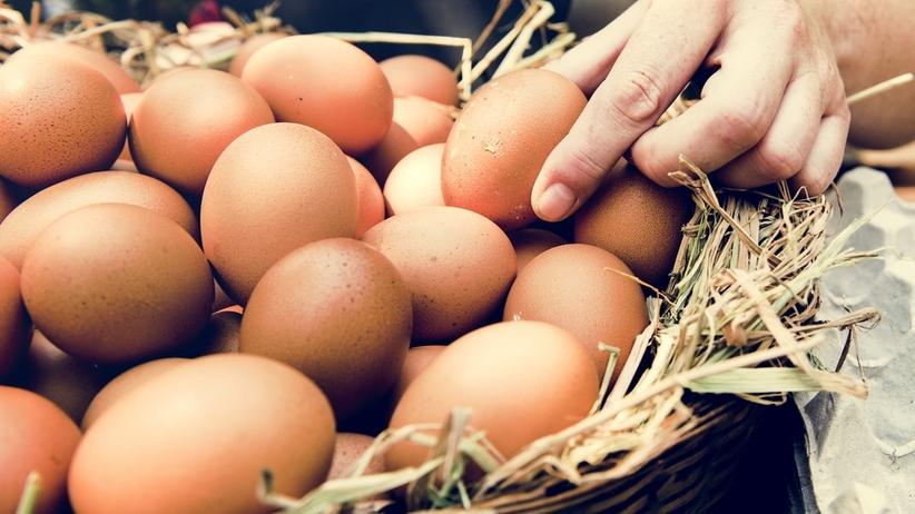 Umarł po zjedzeniu jajek