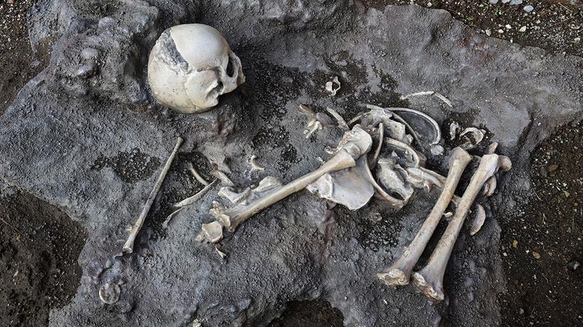 Wezuwiusz szczątki