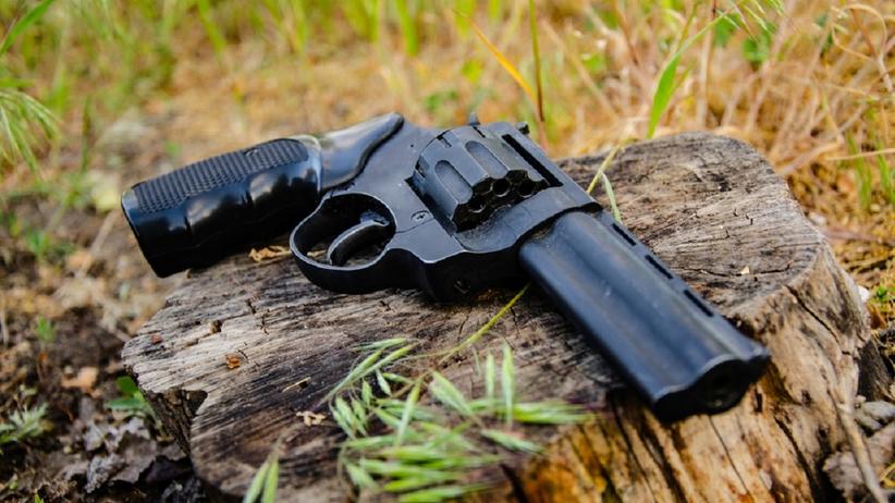 Pistolet w lesie