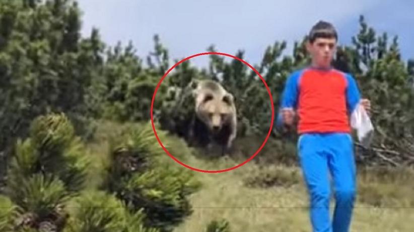 12-latek spotkał niedźwiedzia
