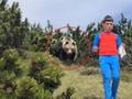 El niño de 12 años conoció a un oso